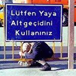 Türklerin yaya geçidini çok yanlış anladığını kanıtlayan 10 şey
