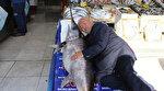 Son 10 yılın en bereketli sezonu balıkçıların yüzünü güldürdü