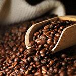 İklim değişikliği kahve üretimini etkiliyor: Çiftçiler sağlıklı mahsul yetiştiremiyor!