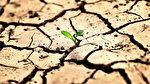 İstanbul için tehlike çanları çalıyor: Barajlarda 100 günlük su kaldı