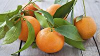 """Rusya'ya en çok """"mandarin"""" ihraç edildi"""