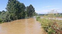 Sakarya'da tarım arazilerini su bastı-Sakarya haber