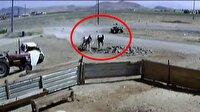 Dört nala koşan at arabasındaki çocuk feci kazada öldü!