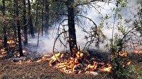 Karabük'teki orman yangınlarında son durum