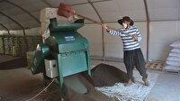 Merakla başladı: Kurduğu tesiste ayda 2 ton solucan gübresi üretiyor