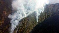 Hatay'daki orman yangınında 4 hektar alan zarar gördü!
