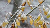Niğde, Nevşehir, Kayseri ve Yozgat'ta okullar tatil mi? Meteoroloji'den kar yağışı uyarısı