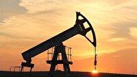 Venezuela'da petrol şirketine 'yolsuzluk' gözaltısı