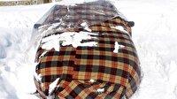 Araçları soğuktan battaniye ile koruyorlar