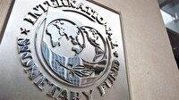 IMF işine baksın
