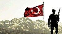 Türk bayrağı: En güzel Türk bayrak resimleri