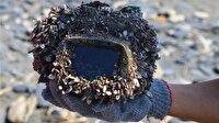 Okyanusta kaybettiği kamerasını 2 yıl sonra buldu