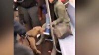 Metroda pitbull dehşeti kamerada