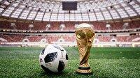 Rusya'ya Dünya Kupası'ndan çılgın gelir