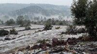 Manisa'da dolu yağışı ekili alanlara zarar verdi