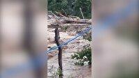 Köprünün adeta yürüdüğü görüntüler ortaya çıktı