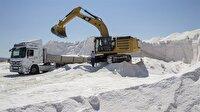 3 bin lira maaşla tuz toplayacak işçi arıyorlar