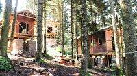 Gölcük Tabiat Parkı'na orman köşkleri yapılıyor
