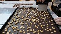 Çikolatanın zararı nelerdir?