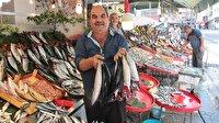 Balık pazarının gözdesi palamut oldu