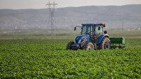 Ziraat Bankası tarımsal kredi borçlarını yeniden yapılandıracak