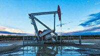 Rus Bakan kritik rakamı açıkladı: Petrol fiyatlarına etki edecek