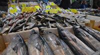 Kötü hava balık fiyatlarını vurdu
