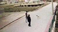Otomobille köpeğe kasıtlı çarpma anı güvenlik kamerasında