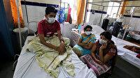 Hindistan'daki domuz gribi salgını yayılıyor