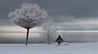 Doğu Anadolu'da kış görüntüleri mest etti