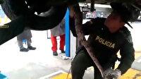 Aracın ses gelen motorundan dev boa yılanı çıktı