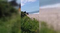 Düzce'deki bir plajda deniz mayını tetikleyicisi imha edildi