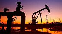Petrol arama ruhsatı kararları açıklandı
