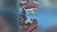 İngiltere'de iki aracın arasına sıkışan kadın görenleri hayrete düşürdü
