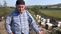 Yangında arıları telef oldu: Gözyaşları içinde yardım istedi