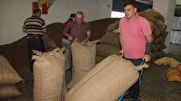Türkiye en fazla fındığı Almanya'ya sattı