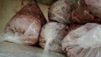 Kağıthane'de domuz eti operasyonu: 100 kilogramdan fazla kaçak domuz eti bulundu