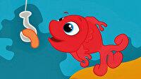 Kırmızı balık para içinde yüzüyor