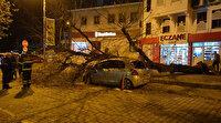 Gece yarısı korku dolu anlar: Dev ağaç otomobilin üzerine devrildi