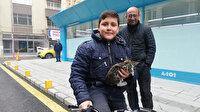 İtfaiyenin kurtardığı yavru kediyi liseli Mehmet sahiplendi