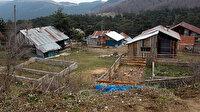 Bolu'da 8 atın 'ruam' karantinası sürüyor
