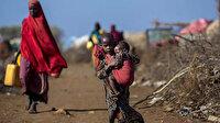 Zimbabve'de nüfusun yarısından fazlası açlıkla karşı karşıya