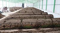 Burdur'dan Irak'a 25 ton solucan gübresi ihracatı