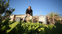 Gazze'de doğal atıklardan organik gübre üretiyor: İsrail'e bağımlılığının sona ermesine katkıda bulunacağım