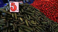 Ocakta en fazla salatalık fiyatı arttı: Etek ise fiyatı en çok azalan ürün oldu