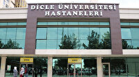 Diyarbakır'da domuz gribinden bir kişi hayatını kaybetti