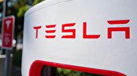 Tesla Almanya'da kuracağı fabrika için 92 hektarlık ormanı yok edecek