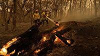 Avustralya'daki yangınlar 6 ay sonra ilk kez kontrol altına alındı