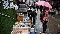 Çin virüs salgını son bulana kadar yabani hayvanların ticaretine yasaklama getirdi