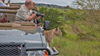 Yaban hayatı fotoğrafçılarının Güney Afrika'daki tehlikeli yolculuğu